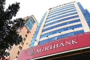 Agribank vẫn 'ngổn ngang' trước hạn chót cổ phần hóa