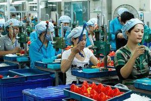 Minh bạch xuất xứ sẽ tạo điều kiện cho doanh nghiệp nhỏ phát triển