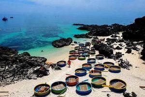 Doanh nghiệp du lịch thu hút khách quốc tế đến Việt Nam bằng cách nào?