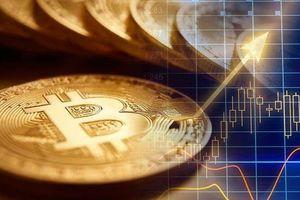 Rung lắc dữ dội, mỗi Bitcoin có thêm 525 USD