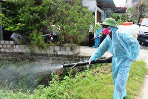30/30 quận, huyện ở Hà Nội có người mắc sốt xuất huyết
