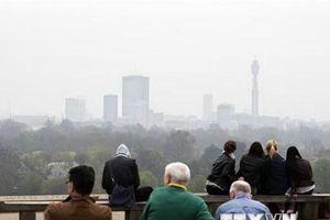 Ô nhiễm không khí làm gia tăng nguy cơ mắc các bệnh về tâm thần