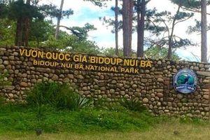 Xử lý dứt điểm tình trạng xâm nhập trái phép vào Vườn Quốc gia Bidoup- Núi Bà