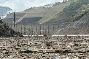 Gỗ tạp đóng mảng gây khó khăn trên hồ thủy điện Lai Châu