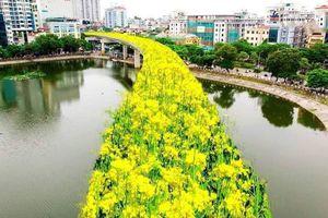 Cư dân mạng quan tâm: Chế ảnh đường sắt trên cao Cát Linh - Hà Đông