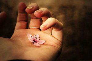Phật dạy đây sẽ là người có phúc báo tốt, dễ gặp quý nhân và 5 việc làm cần tránh trong đời