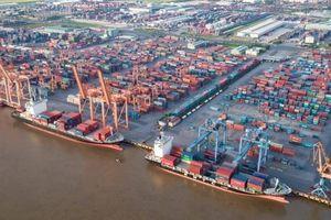 Cảng Hải Phòng thử nghiệm giao hàng điện tử với hãng tàu