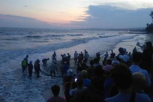 Danh tính 4 sinh viên mất tích khi tắm biển ở Bình Thuận
