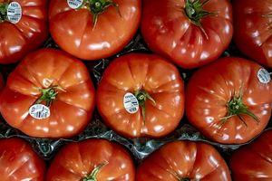 Mỹ đạt thỏa thuận thương mại về cà chua với Mexico sau xung đột thuế quan