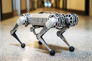 Những siêu phẩm robot đỉnh cao tại Hội nghị Robot thế giới 2019