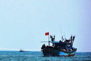 Một tàu cá Quảng Ngãi bị mắc cạn trên vùng biển Trường Sa