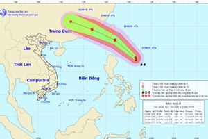 Bão Bailu giật cấp 12 áp sát Biển Đông, Bắc Bộ và Bắc Trung Bộ có mưa rất to