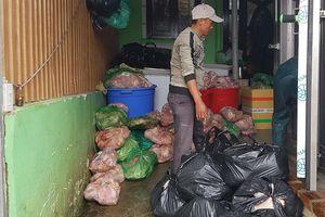 Phạt cơ sở trữ 8 tấn thịt heo 'bẩn' hơn 100 triệu đồng