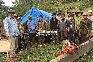 Nghệ An: Bắt nhóm đối tượng mang theo ma túy và vũ khí nóng vào chặt phá rừng
