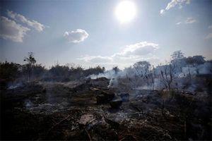 Hình ảnh Amazon cháy tang thương