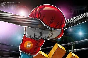 Giá tiền ảo hôm nay (23/8): Bitcoin biến động hẹp, tìm hỗ trợ ở vùng 10.000 USD