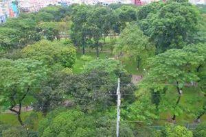 TP.HCM chấm dứt hợp đồng dự án bãi đỗ xe ngầm tại công viên Lê Văn Tám
