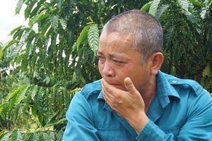 Vụ gỗ khô: Nghẹn ngào trước ngày đi thi hành án tù