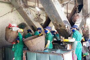 Bộ Công an đề nghị Cà Mau báo cáo kết quả kiểm tra nhà máy rác của 'thiếu gia' Tô Công Lý
