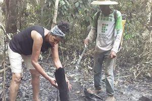 Thảm cảnh cháy rừng Amazon: Nhiều gia đình đã mất tất cả