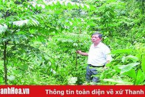 Khôi phục và phát triển rừng lim xanh