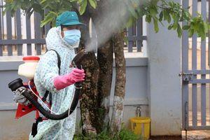 Quảng Nam: Số ca mắc sốt xuất huyết tăng gần 2 lần so với năm 2018