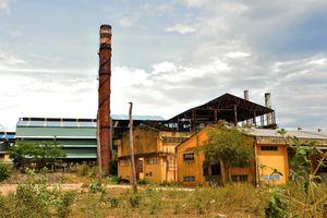 Ngập trong nợ nần, nhà máy đường Bình Định bỏ hoang