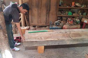 Phát hiện thêm nhiều điểm tập kết gỗ 'khủng' tại Đắk Lắk
