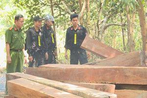 Điều tra phá rừng ở Đắk Lắk, phát hiện thêm điểm tập kết gỗ lậu