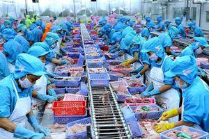 Doanh nghiệp Việt Nam đang có cơ hội rất lớn để thâm nhập vào thị trường EU