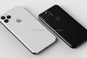 LG bắt đầu sản xuất màn hình OLED cho iPhone 11