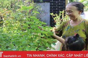 Những 'bông hoa trong vườn Bác' ở TP Hà Tĩnh