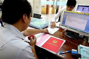Đình chỉ công tác cán bộ thuế quận 12. TP Hồ Chí Minh