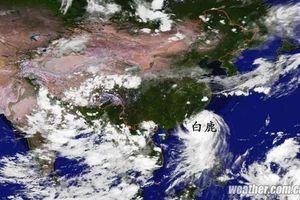 Bão Bailu gây mưa lớn tại nhiều tỉnh thành của Trung Quốc
