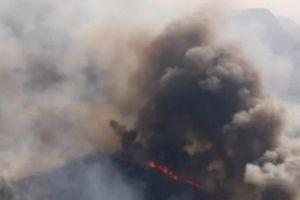 Rừng Amazon ở Bolivia: Hơn 800.000ha rừng bị tàn phá do cháy
