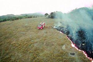 Hậu quả thảm khốc từ vụ cháy rừng Amazon