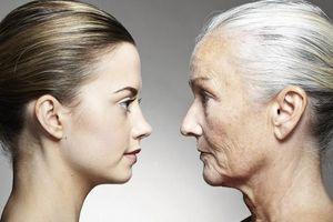 Phát hiện cơ chế mới giúp điều trị các bệnh liên quan lão hóa