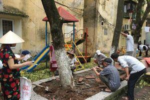 Nghi hàng sưa hơn 20 năm có dấu hiệu rụng lá bất thường, nhiều người Hà Nội nạo đất tưới nước để 'thanh lọc' cứu cây