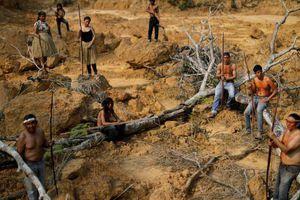 Thổ dân Brazil thề bảo vệ rừng Amazon 'tới giọt máu cuối cùng'