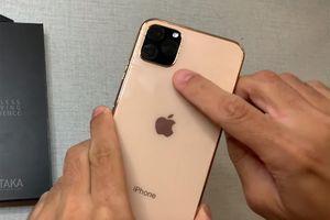 Xuất hiện bản dựng thô iPhone 11 và 11 Pro