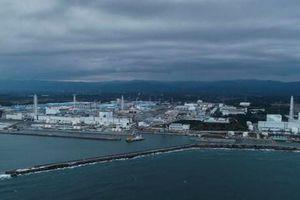 Nhật Bản chưa có quyết định cụ thể về xử lý nước nhiễm xạ