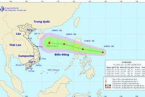 Áp thấp nhiệt đới mạnh lên thành bão Podul, sức gió giật cấp 10