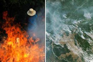 G7 ngỏ ý viện trợ 22 triệu USD để xử lý cháy rừng Amazon, Brazil từ chối