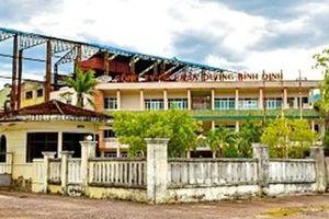 Vì sao nhà máy đường Bình Định phải đóng cửa?
