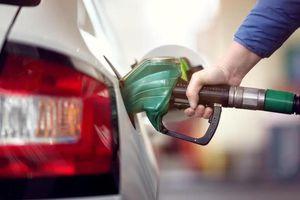 Dùng biển số giả trộm nhiên liệu, chủ xe thật khốn khổ minh oan