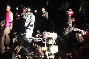 Dân Lâm Đồng ồ ạt vào rừng săn lùng loại cây giống sâm Ngọc Linh