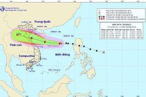 Chiều 30/8, bão đổ bộ vào Thanh Hóa - Quảng Bình, gió giật cấp 11