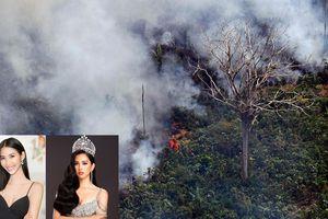 Cháy rừng Amazon: Hoàng Thùy, Tiểu Vy và nhiều sao Việt lên tiếng