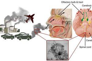 Tác hại của ô nhiễm không khí tới sức khỏe con người
