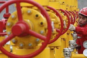 Phớt lờ các lệnh trừng phạt của Mỹ, Trung Quốc tăng cường nhập khẩu dầu từ Iran